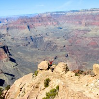 A Trip to the Grand Canyon from Las Vegas!
