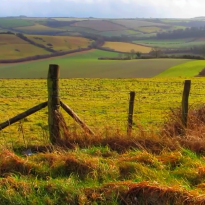 Exploring the Countryside in Dorset, England #VIDEO