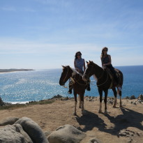 Things to Do in Cabo San Lucas #VIDEO